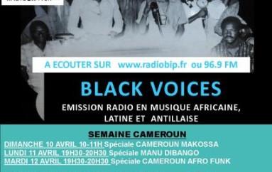 Programme de avril 2011 de l'émission Black Voices