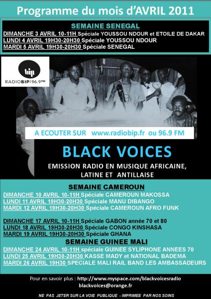 Le programme de Black Voices