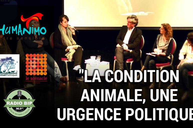 La condition animale, une urgence politique