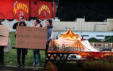 Manifestation contre le cirque Zavatta