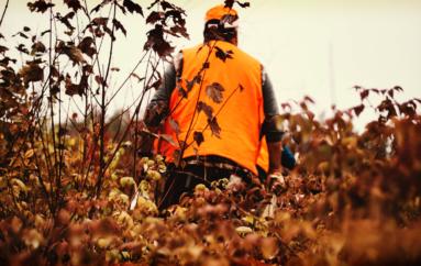 La chasse, un risque constant pour les promeneurs dans le Doubs